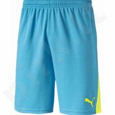 Šortai Puma BTS Shorts 654742531