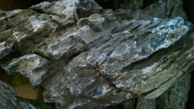 Canyon Rock