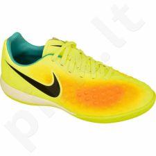 Futbolo bateliai  Nike Magista Opus II IC Jr 844422-708
