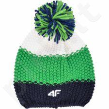 Kepurė  4F C4Z16-CAM010