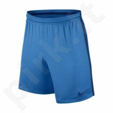 Šortai futbolininkams Nike Squad M 807670-435