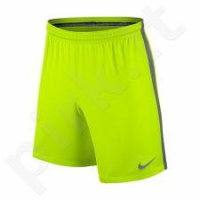 Šortai futbolininkams Nike Squad M 807670-703