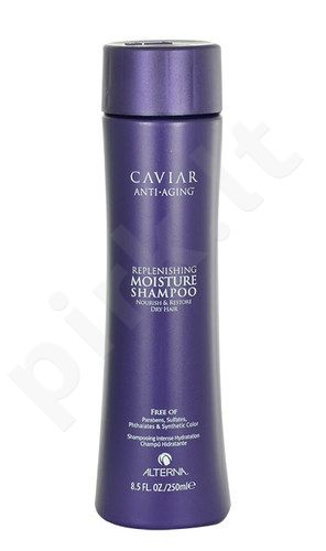 Alterna Caviar Replenishing Moisture šampūnas Dry Hair, kosmetika moterims, 250ml