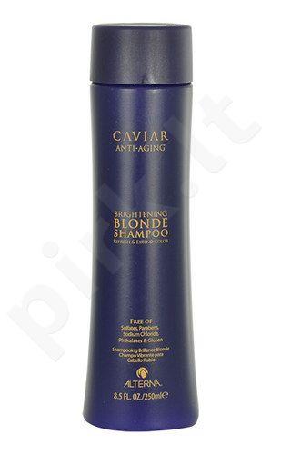 Alterna Caviar Brightening Blonde šampūnas, kosmetika moterims, 250ml