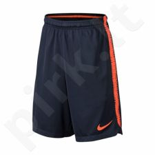 Šortai futbolininkams Nike Dry FC Barcelona Squad Shorts M AA3500-451