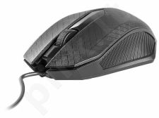 Pelė TRACER Click USB DPI 1000