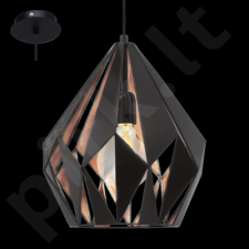 Pakabinamas šviestuvas EGLO 49254 | CARLTON 1