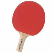 Stalo teniso raketė BT20