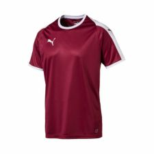 Marškinėliai Puma LIGA Jersey M 703417 09