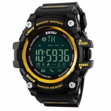 Vyriškas laikrodis SKMEI 1227 GD Gold