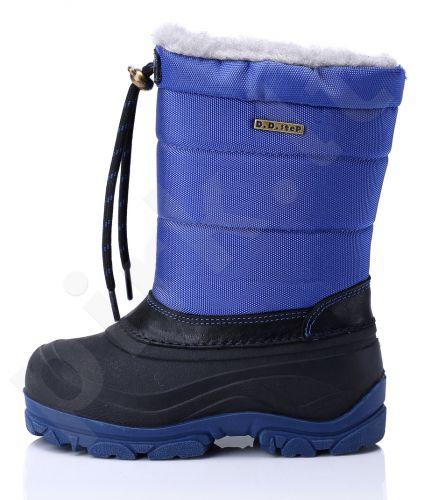 D.D.Step sniego batai 21-26 d.