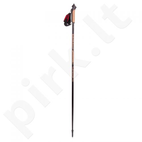 Šiaurietiško ėjimo lazdos Viking Paras 115 cm 660/16/2121/09