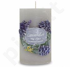 Žvakė 109766