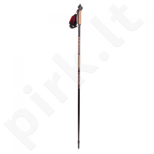 Šiaurietiško ėjimo lazdos Viking Paras 130 cm 660/16/2121/09