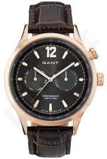 Laikrodis GANT MARSHFIELD W70614