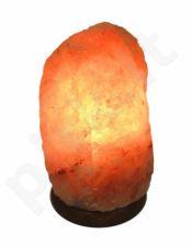 Druskos lempos su medžiu 2-3 kg (10).