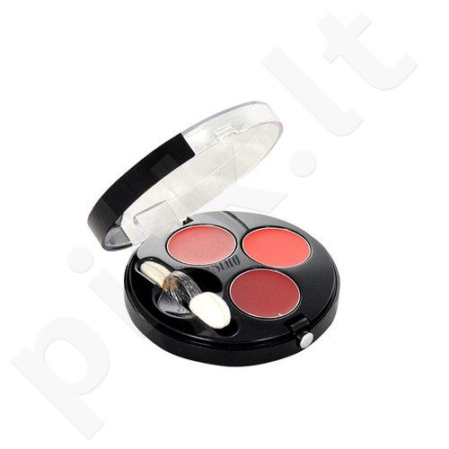 BOURJOIS Paris Colorissimo Lips Palette, kosmetika moterims, 1,8g, (01 Rouges Collection)