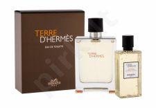 Hermes Terre D´Hermes, rinkinys tualetinis vanduo vyrams, (EDT 100 ml + dušo želė 80 ml)