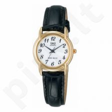 Moteriškas laikrodis Q&Q VY17J104Y