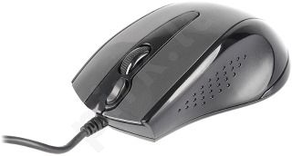Pelė A4Tech V-TRACK N-500F-1 USB Blizganti pilka