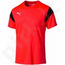 Marškinėliai futbolui Puma Football TRG M 65491555