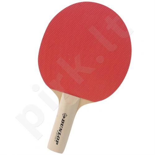 Stalo teniso raketė BT10 pradedantiesiems