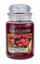 Yankee Candle Black Cherry, aromatizuota žvakė moterims ir vyrams, 623g