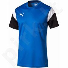 Marškinėliai futbolui Puma Football TRG M 65491502