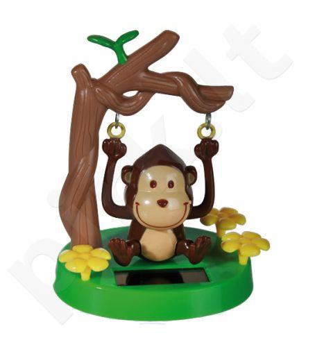 Saulės beždžionė (judanti)