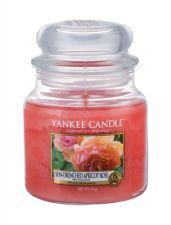 Yankee Candle Sun-Drenched Apricot Rose, aromatizuota žvakė moterims ir vyrams, 411g