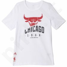 Marškinėliai Adidas Basics Tee Chicago Bulls Junior AH5083