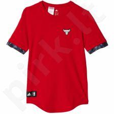 Marškinėliai Adidas Fanwear Tee Chicago Bulls Junior AH5087