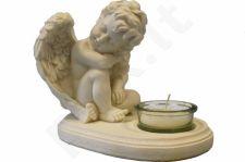 Žvakidė 65425
