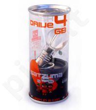 USB raktas - lemputė (16GB)