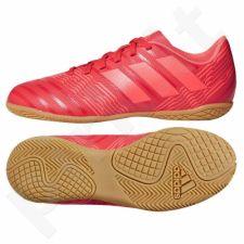 Futbolo bateliai  Nemeziz Tango 17.4 IN Jr CP9222
