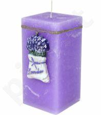 Žvakė 104211