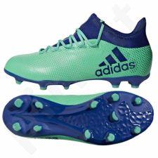 Futbolo bateliai Adidas  X 17.1 FG Jr CP8980