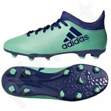Futbolo bateliai Adidas  X 17.3 FG Jr CP8993