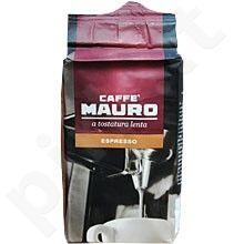 Kava pupelėmis Mauro 1121 Special Espresso 0.5kg