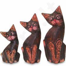 3 Katės 105683