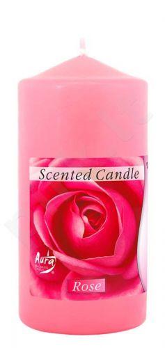 Žvakė Swz60/120 78 Rose