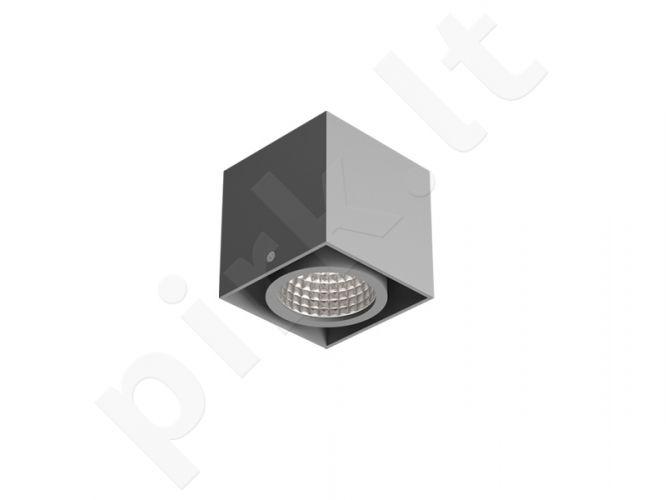 Spot 10-Modelis: Tuz T019B1S