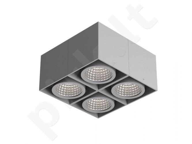 Spot 10-Modelis: Tuz T019B6S