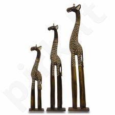 Statulėlės 3 Žirafos 108127