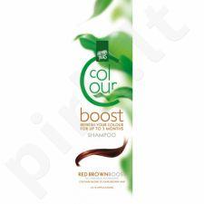 Colour boost  dažantis šampūnas Red Brown