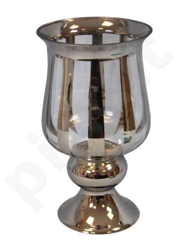 Žvakidė 82702
