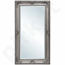 veidrodis