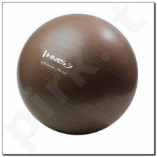 Gimnastikos kamuolys Anti-Burst 65 cm