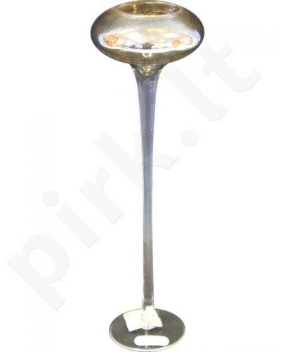 Žvakidė 71024