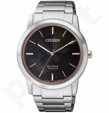 Vyriškas laikrodis Citizen AW2024-81E